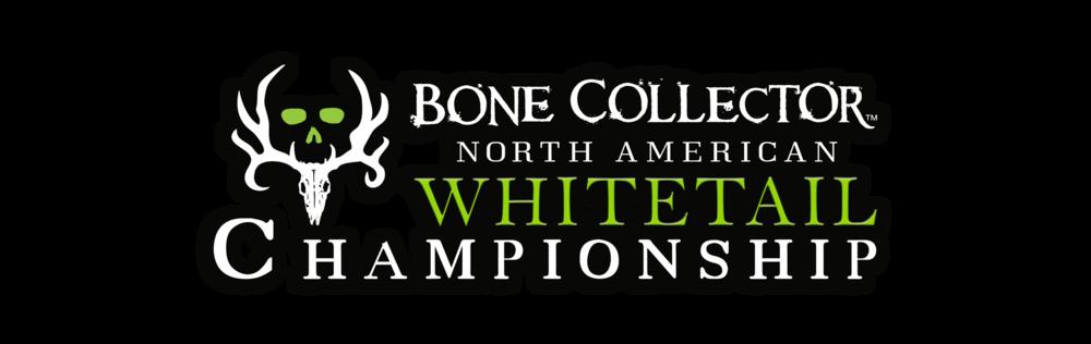 BC logo_main banner.png