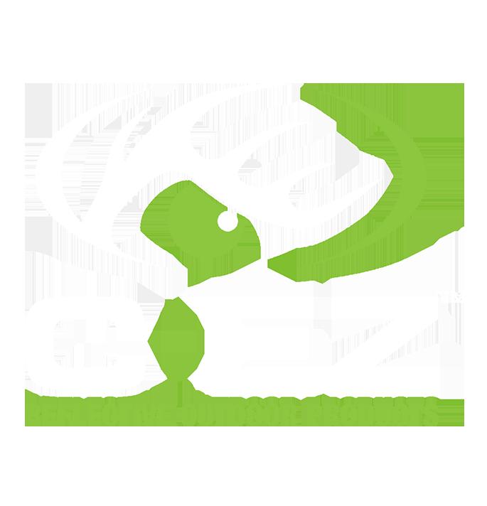 CEZweblogo.png