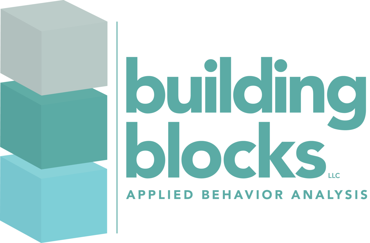 Building Blocks LLC