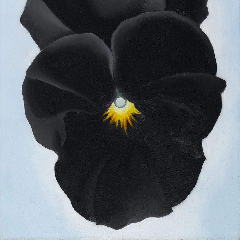 Georgia O'Keeffe -  Black Pansy & Forget-Me-Nots  - 1926 - oil on canvas