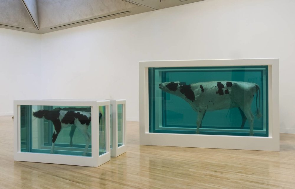 Damien Hirst,  Mother and Child (Divided) , exhibition copy 2007 (original 1993), Glass, stainless steel, Perspex, acrylic paint, cow, calf and formaldehyde solution