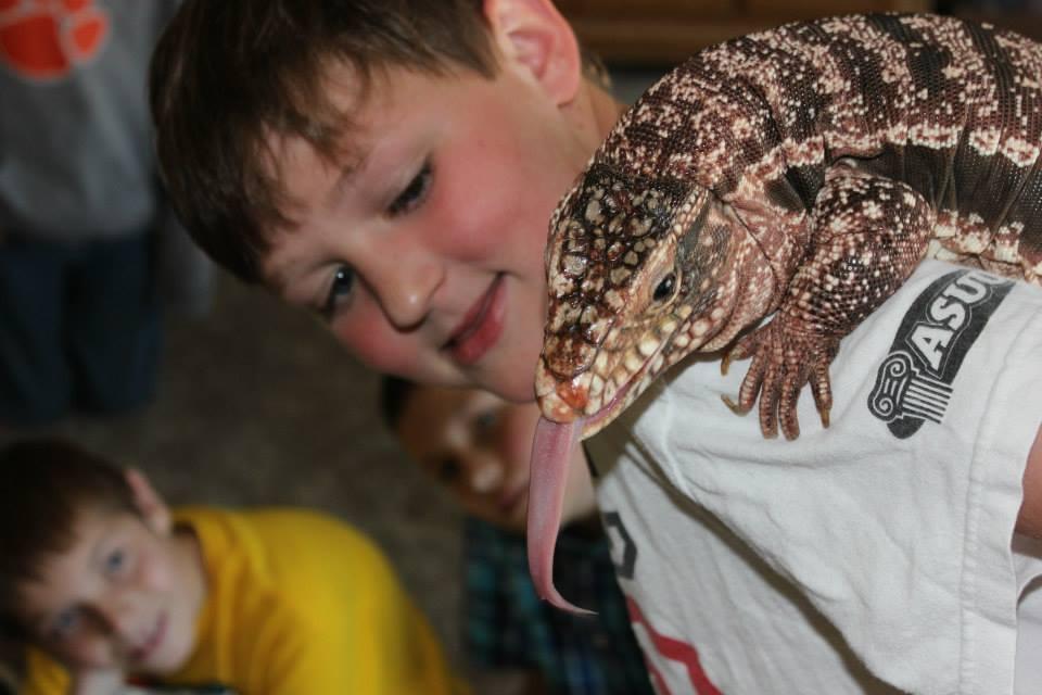 Handle-a-lizard.jpg