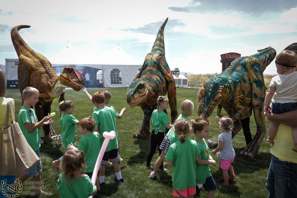 Dinosaur Birthday Party.jpg