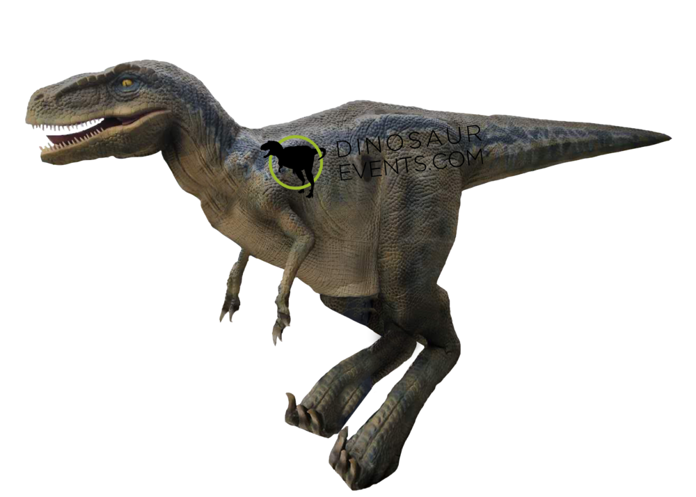 Blue Realistic Dinosaur Costume with logo.png