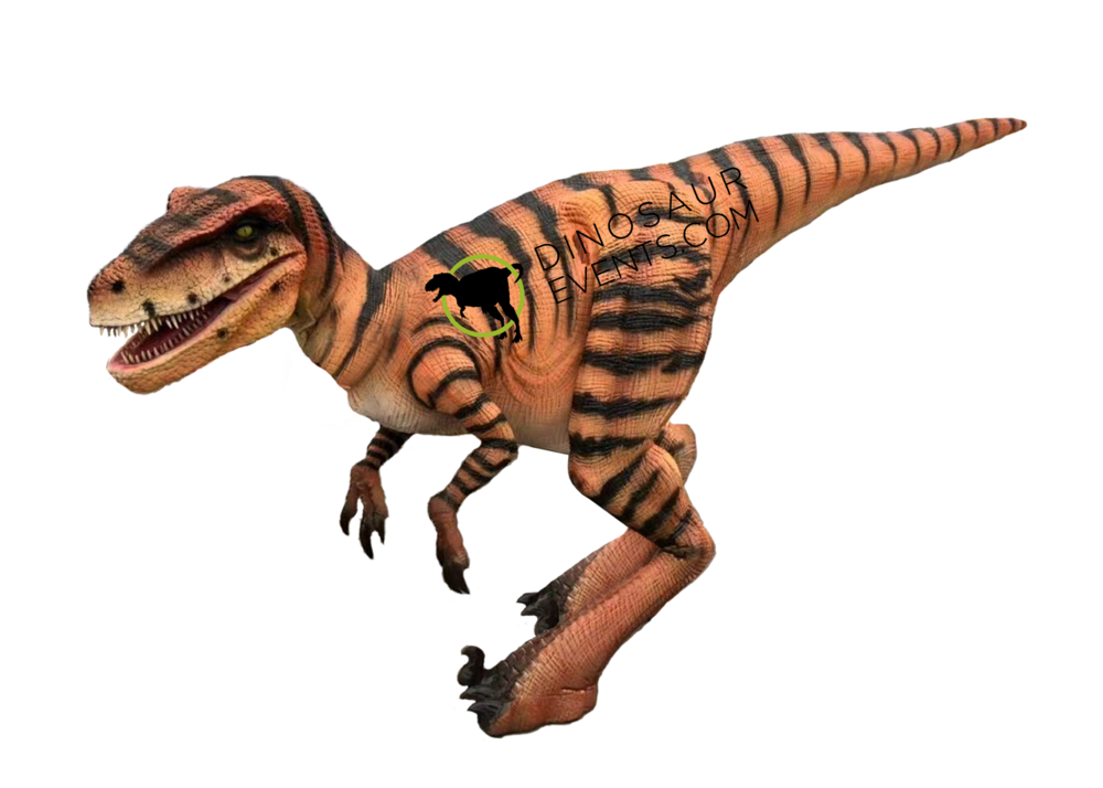Raptor Realistic Dinosaur Costume with logo.png