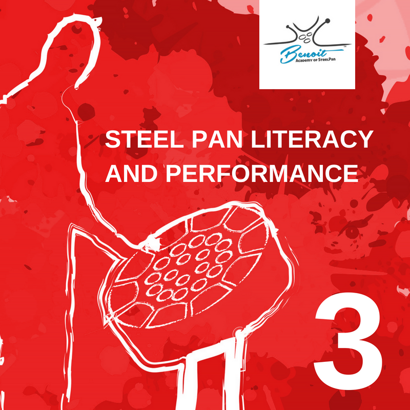 STEEL PAN LITERACY AND PERFORMANCE (5).png