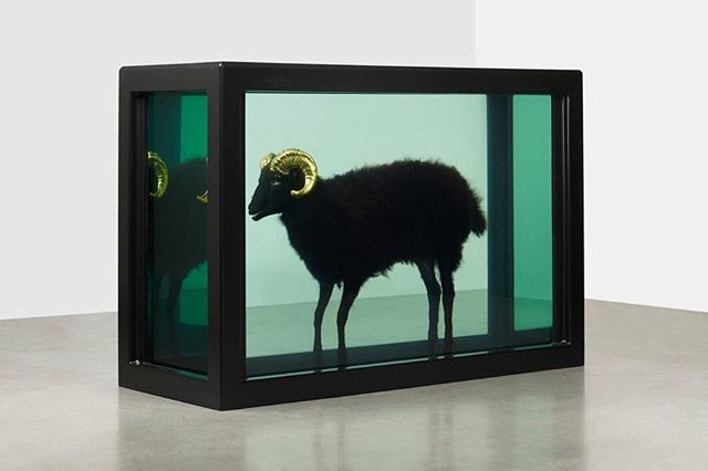Happy #BuyNothingDay y'all! #ConsumeLess #RecycleMore #ProduceLessWaste 🎨: #DamienHirst #BlackSheep