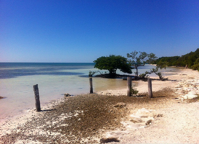 One of the many beaches along the Keys.