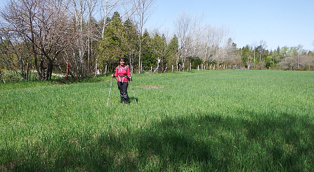 18.1401290360.meadow-shot.jpg