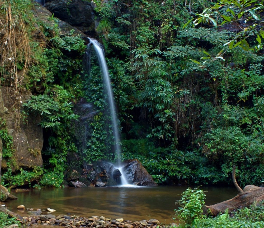 Monthathan Falls: Chiang Mai Thailand: My first jungle trek up the hills of Chiang Mai to see a waterfall.