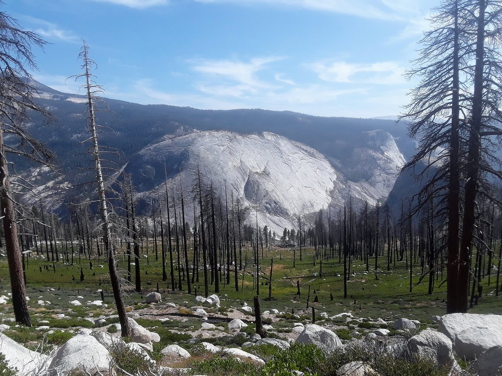 yosemite fire (2).jpg