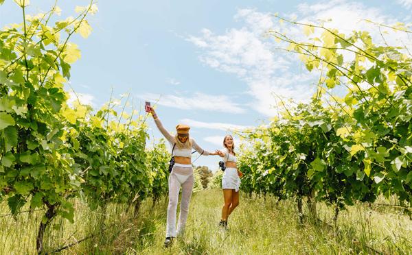 Rochford-Wines-web.jpg