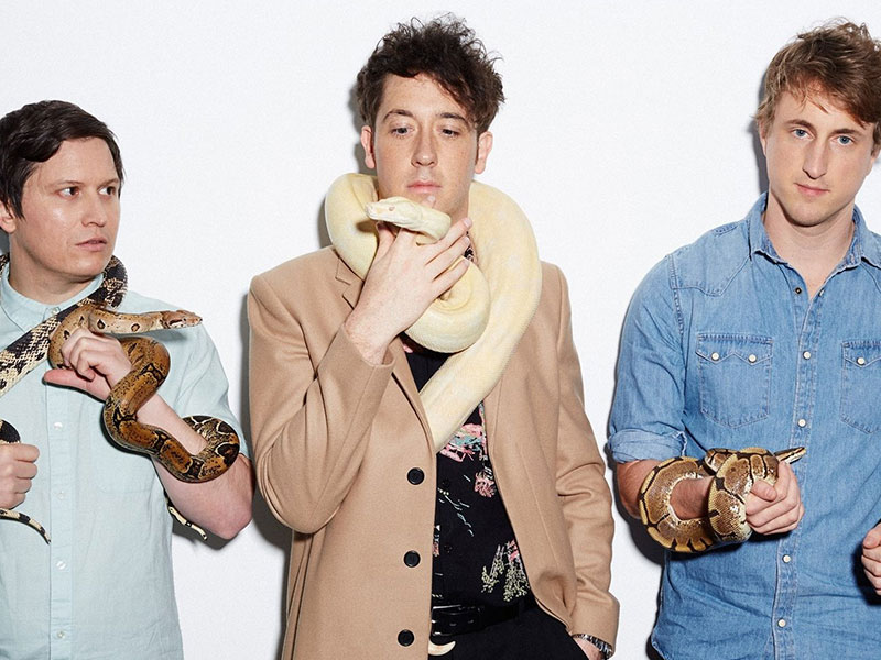 THE WOMBATS -