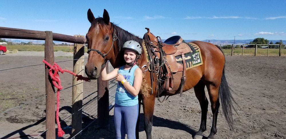Bisko - 15.3 hh (63in) 20 year old Quarter HorseHe is a retired rope horse. He has been on the farm the longest and has taught over 30 kids how to ride western pleasure. He loves the outdoors and carrots. He wants to be in your pocket and loves attentionRiding level: Beginner