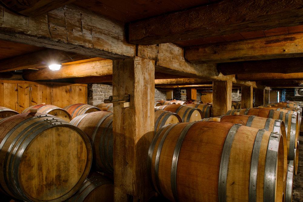 Barrel Cellar Tasting   $50 per person   Book Now