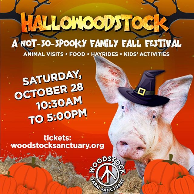 Get your bunny treats tomorrow at @woodstocksanctuary! I'm so excited to be a part of it this year!  #vegan #festival #food #newyork #veganfood #farm