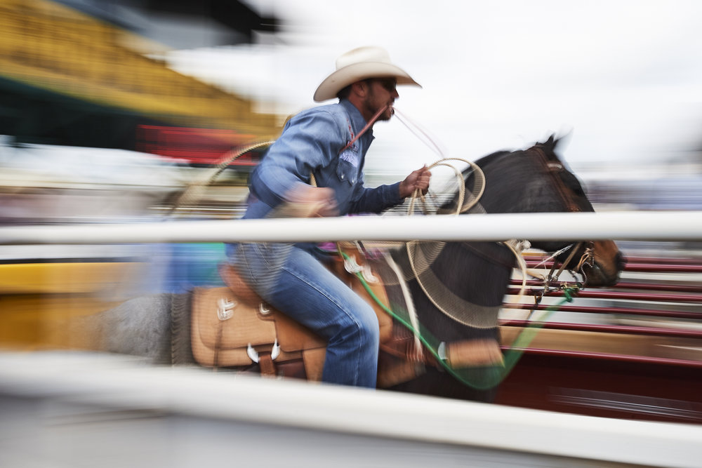 THE CHASE - Proudly presented by CINCH and Cowboy Journal