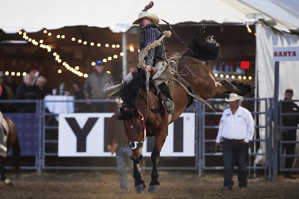 photo by Matt Cohen / Cowboy Journal