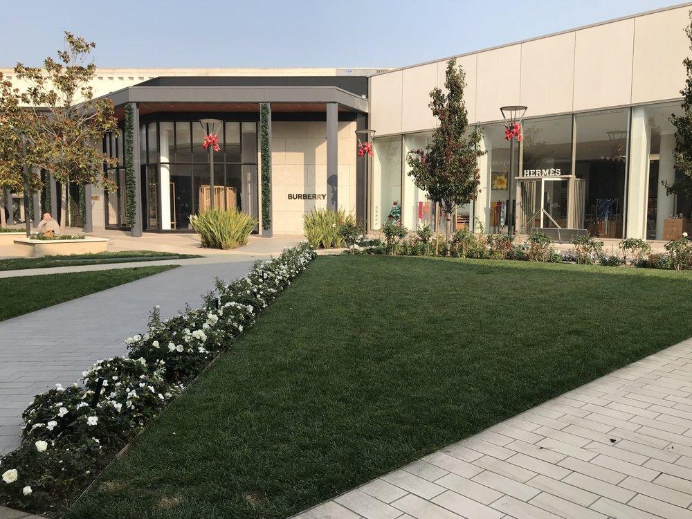 Stanford+Burberry.jpg