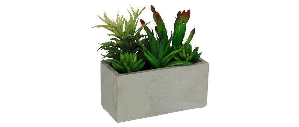 Artificial Succulents in Rectangular Cement