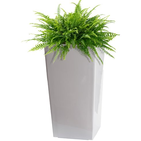 Self-Watering Plastic Pot Planter