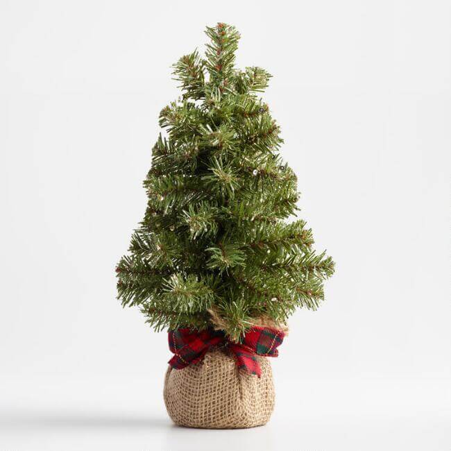 Burlap Wrapped Tree - Cost Plus World Market