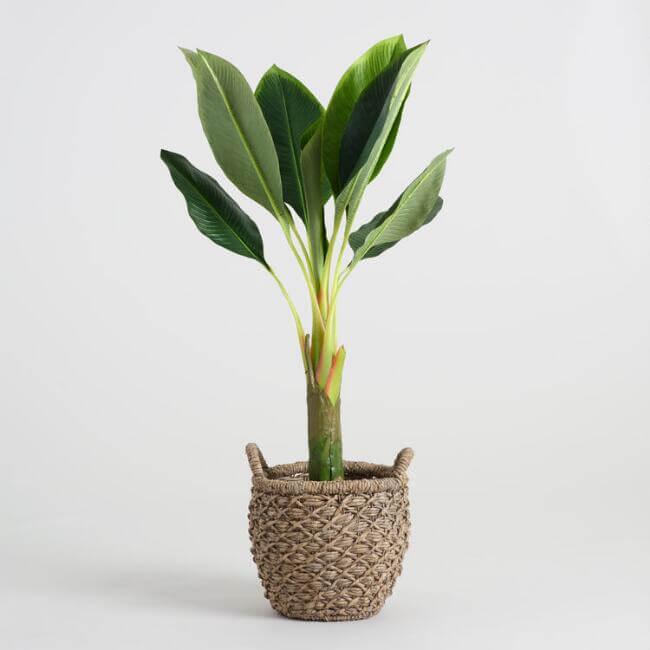 Faux Single Stalk Banana Tree