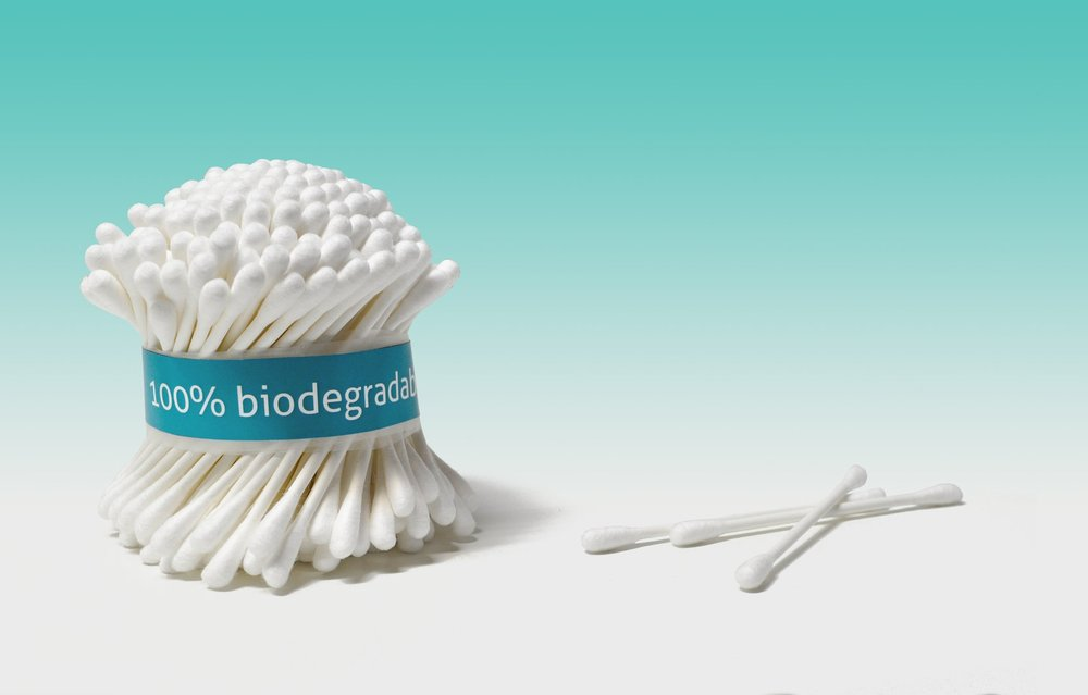 Softening the blow on the environment   paper stemmed cotton buds    Learn how