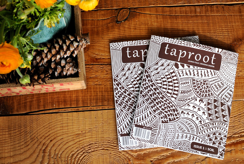 Taproot: Living Fully, Digging Deeper