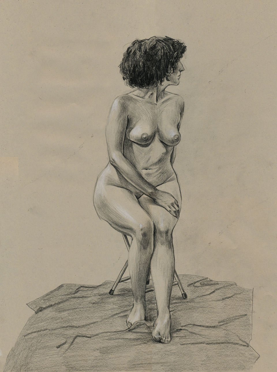 Black and White Pencil on Tinted Paper