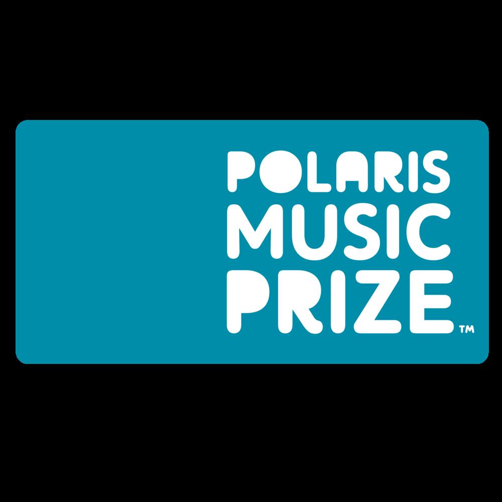 polaris-01.png