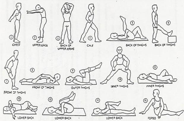 stretches.jpg