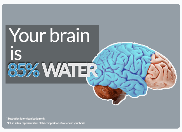 https://www.atbs.com/knowledge-hub/lack-of-water-and-your-brain