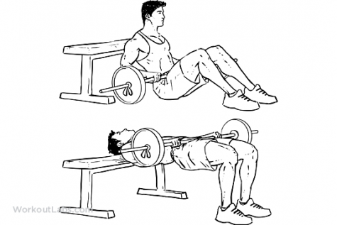 Barbell_Hip_Thrusts-475x317.png