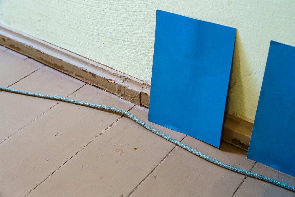 blaue-blaetter.jpg
