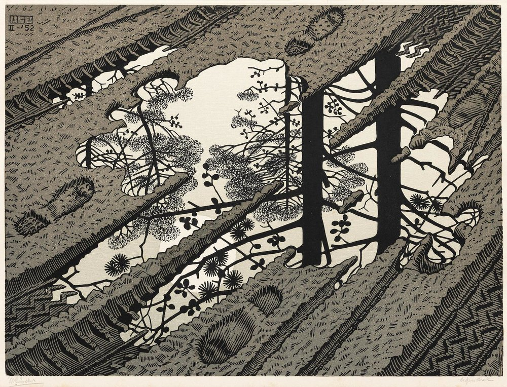 MC Escher,  Puddle , 1952. Woodcut.