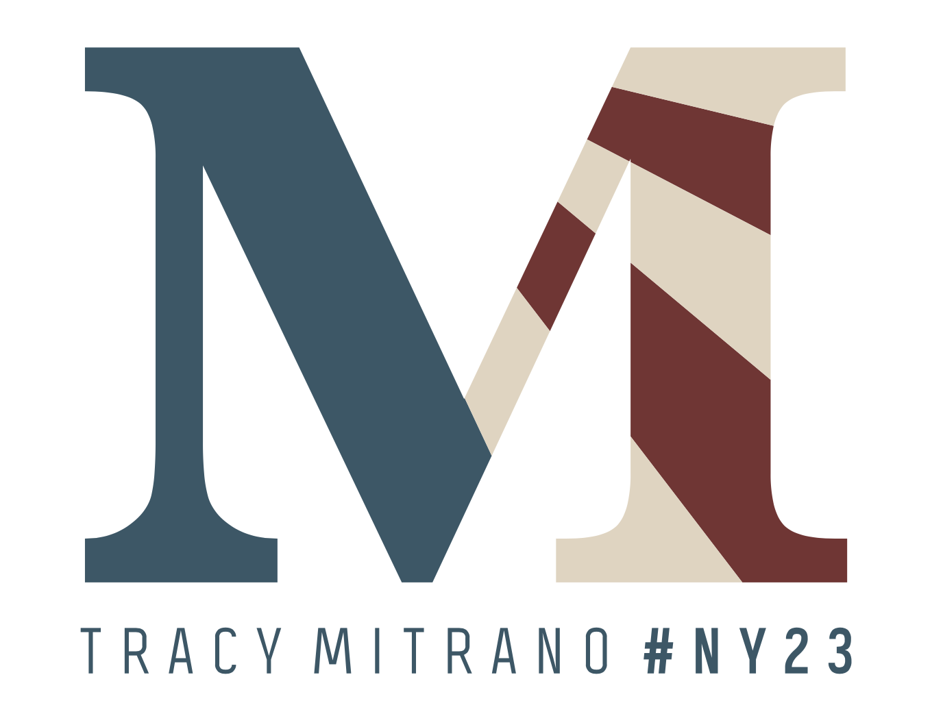 Tracy Mitrano for Congress #NY23