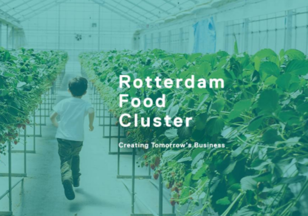 Rotterdam Food Cluster.png