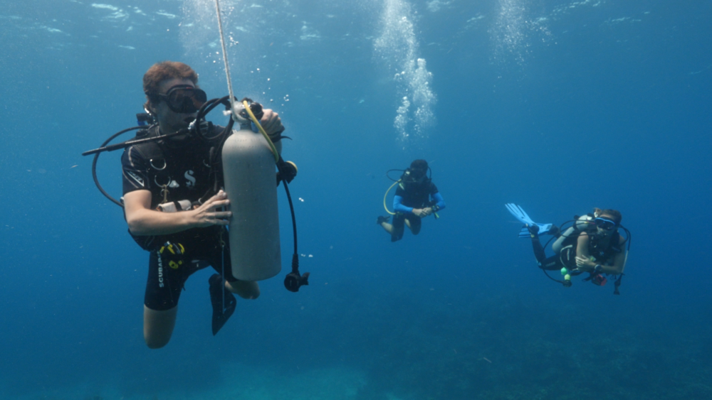 Safety Roatan Divers