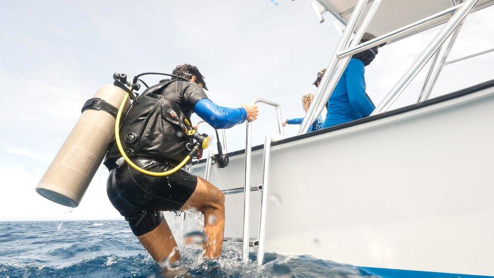 PADI IDC Roatan Divers