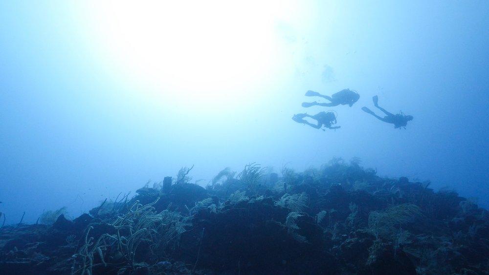 PADI Deep Diver specialty Roatan Divers