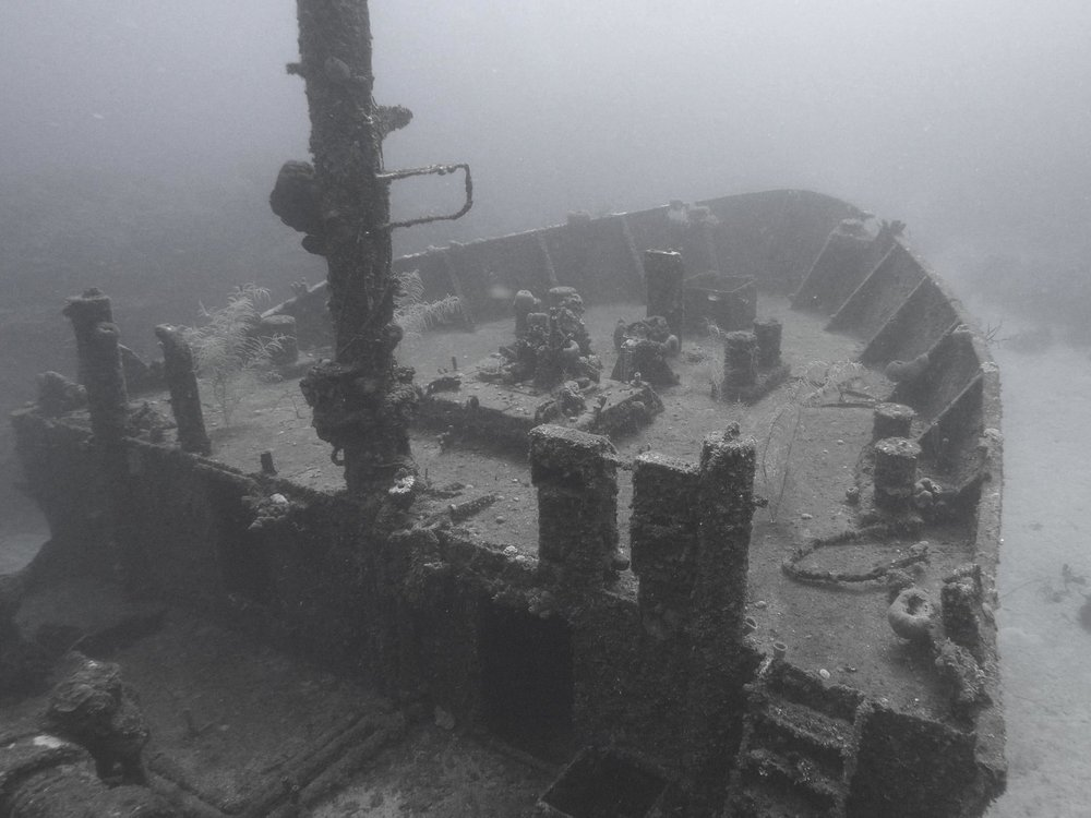 El Aguila shipwreck. Only a 7 minute boat ride away, makes it a frequent dive site of ours!