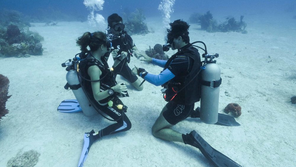 A Roatan Divers Instructor teaching students