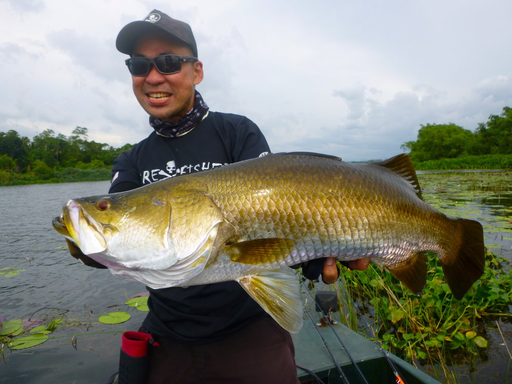 Golden Barramundi Bolgoda Lake Sportfishing Lanka.JPG