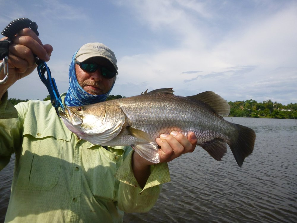 Barramundi Fishing Sri Lanka Sportfishing Lanka.jpg