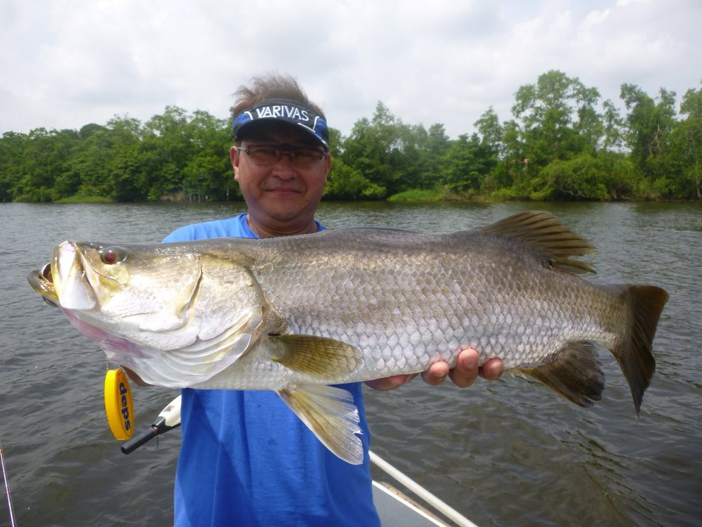 Barramundi fishing sportfishing lanka bolgoda lake tour.jpg