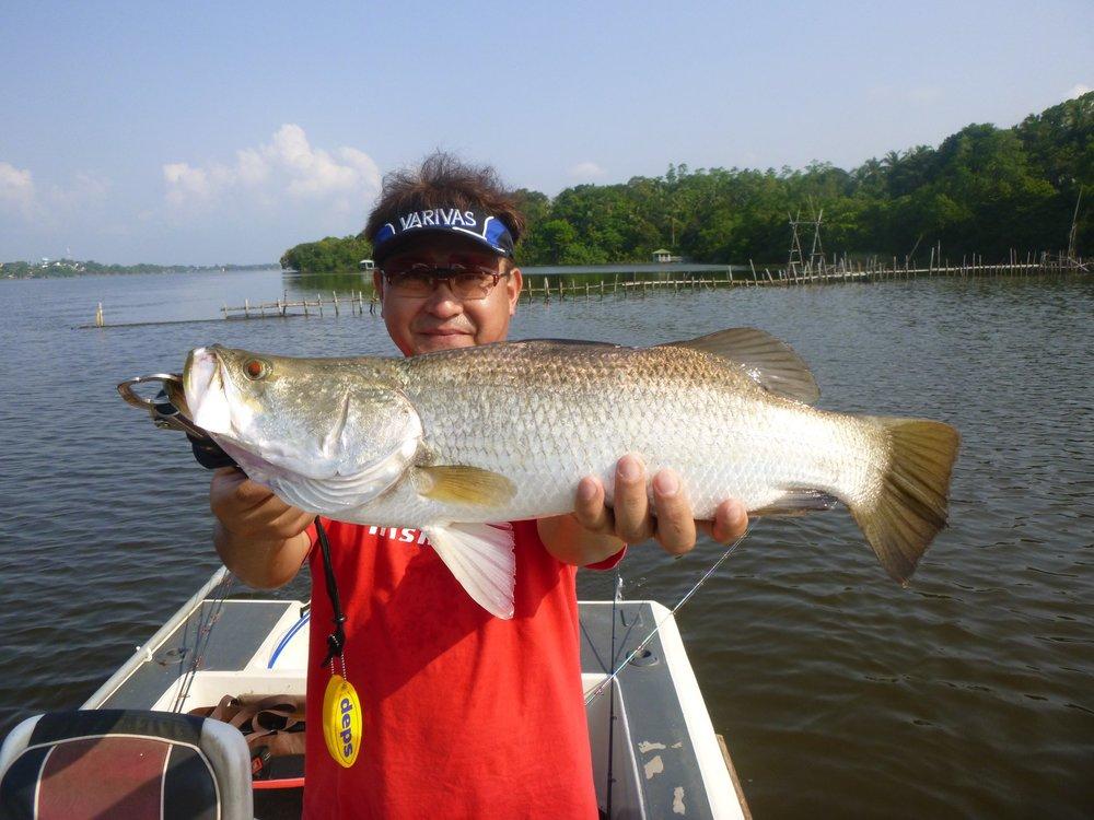 Barra Gamefishing Sportfishing Lanka Bolgoda Lake.jpg