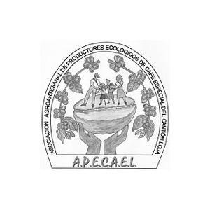 APECAEL.jpg