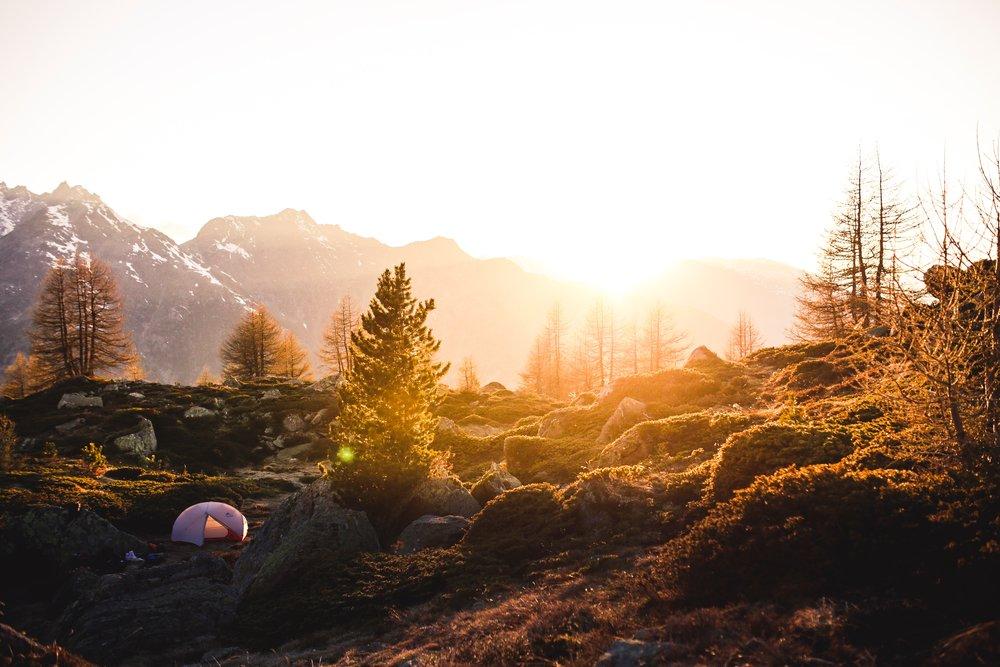boulders-calm-conifers-426894.jpg