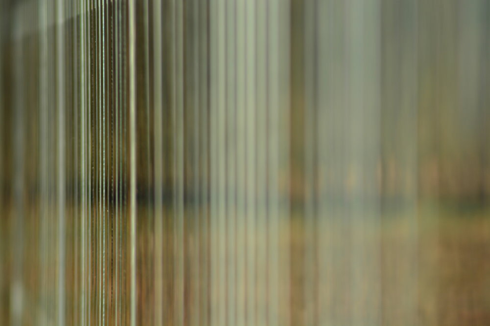 Long View of Mirror Fence (Mirror Fence by Alyson Shotz)